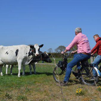 Op de solex toeren en een boerderij bezoeken. Echt Drents uitje op de solex.