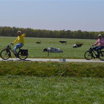 Anderhalve meter uitje met de solex 92 - Het Drents Kwartiertje - Solex Huren / Rijden - Dafje Huren / Rijden - Groepsactiviteiten, workshops, teambuilding en trainingen Drenthe
