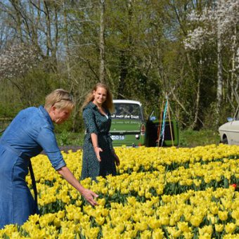 activiteit Drenthe Coronaproof