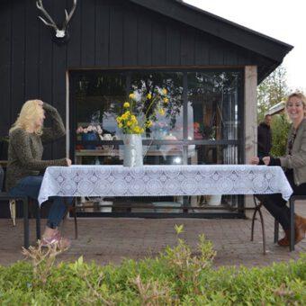 DSC 0391 - Het Drents Kwartiertje - Solex Huren / Rijden - Dafje Huren / Rijden - Groepsactiviteiten, workshops, teambuilding en trainingen Drenthe