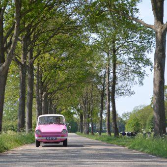 Daf rijden in het voorjaar - Het Drents Kwartiertje - Solex Huren / Rijden - Dafje Huren / Rijden - Groepsactiviteiten, workshops, teambuilding en trainingen Drenthe