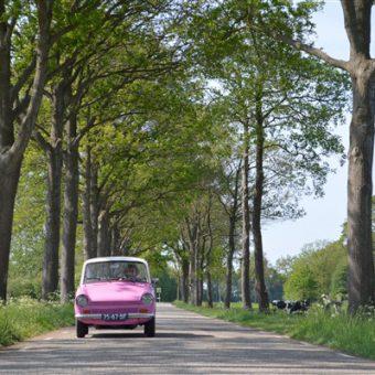 Genieten van Drenthe in het voorjaar tijdens een rit met de Daf 33.