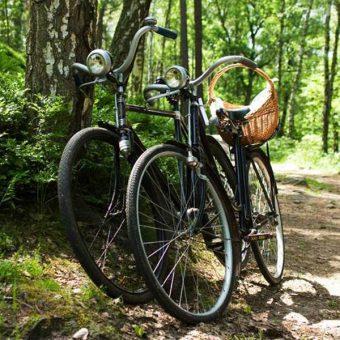 Tijdens een fietstocht genieten van de prachtige omgeving van van hartje Drenthe.