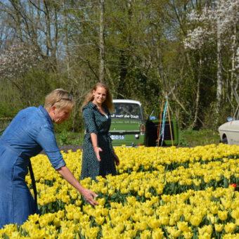 Voorjaarsuitje in Drenthe anderhalve meter - Het Drents Kwartiertje - Solex Huren / Rijden - Dafje Huren / Rijden - Groepsactiviteiten, workshops, teambuilding en trainingen Drenthe