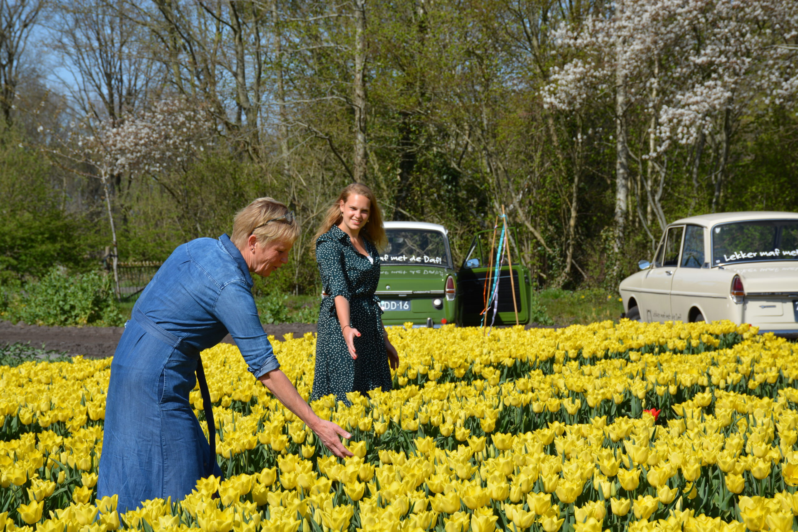 Voorjaarsuitje in Drenthe anderhalve meter scaled - Het Drents Kwartiertje - Solex Huren / Rijden - Dafje Huren / Rijden - Groepsactiviteiten, workshops, teambuilding en trainingen Drenthe