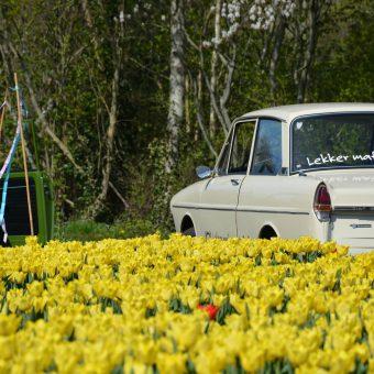 uitje coronaproof pasen in Drenthe