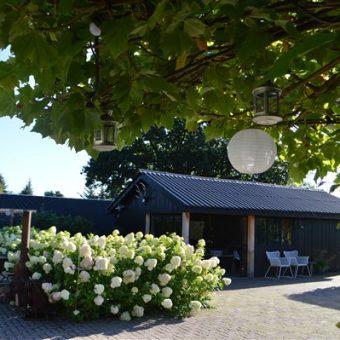 locatie het Drents kwartiertje 30 1 - Het Drents Kwartiertje - Solex Huren / Rijden - Dafje Huren / Rijden - Groepsactiviteiten, workshops, teambuilding en trainingen Drenthe