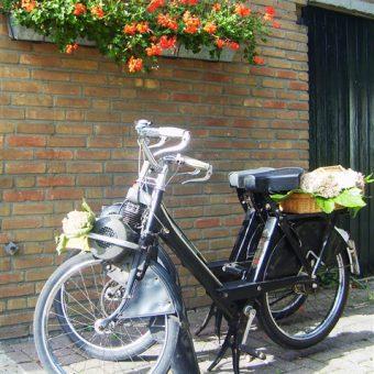 Solexverhuur het Drents kwartiertje in hartje Drenthe.